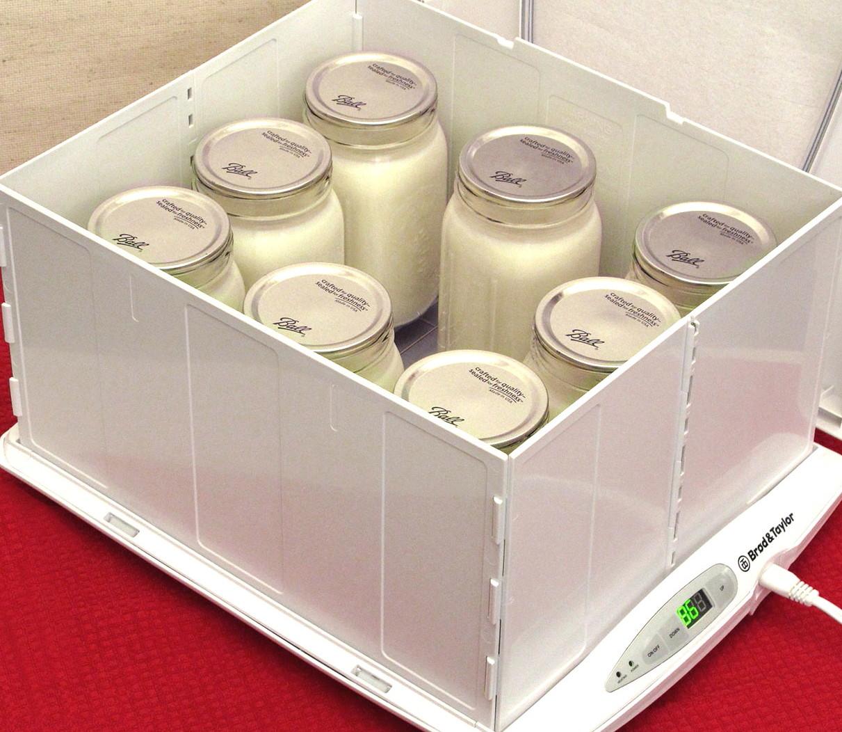 yogurt test photo 5 brighten